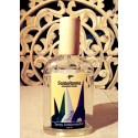 AMBIENTADOR COFRADE AROMA INCIENSO 100 ML SPRAY